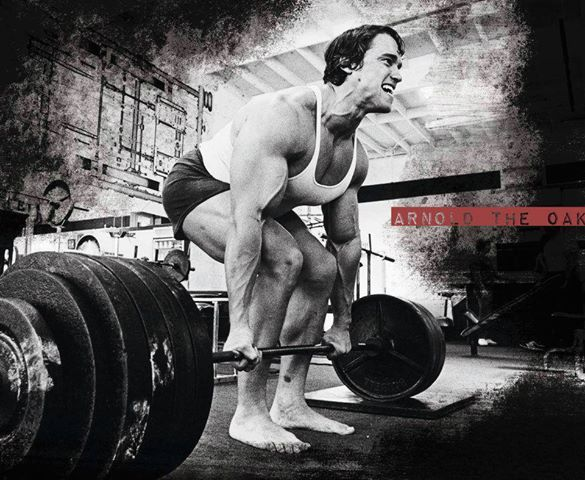 Arnold-Deadlift